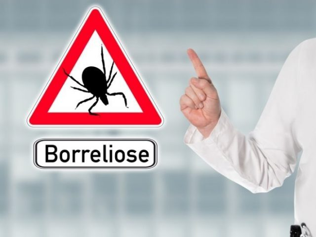 Borelioza ima lahko resne posledice